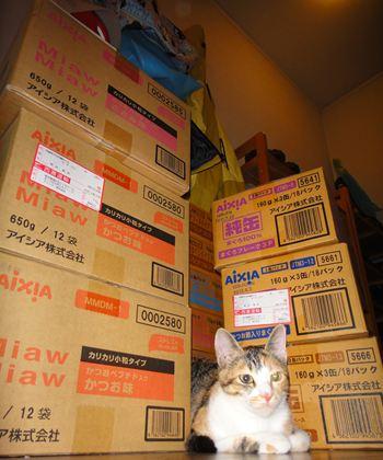 一年分の猫用ペットフード(アイシア)