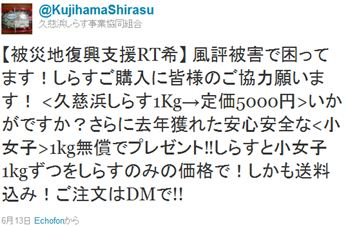 Twitter_shirasu_r