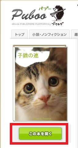 Kindle014