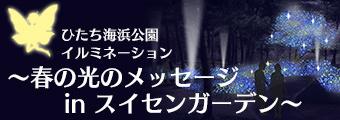 Banner_illumination_half