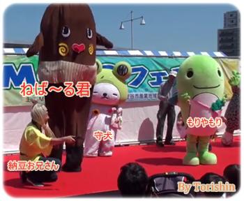 納豆の妖精ねば~る君、納豆お兄さん、もりやもり、守犬、が守谷市で行われたMOCOフェスタに出演