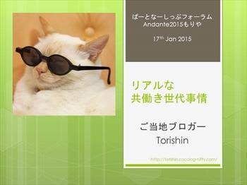 Torshin_presentation_r