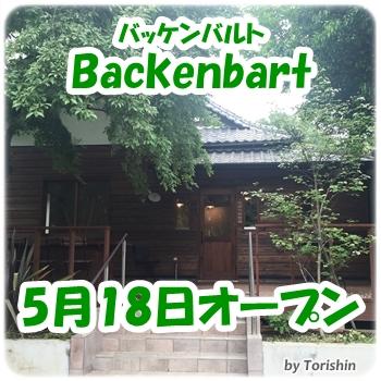 Backenbart_2
